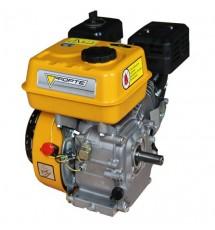 Двигатель бензиновый Forte F-210GS-20