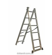 Лестница универсальная 2-х составная Кентавр 2х6